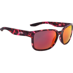 Alpina Darcon Glasses red-black marble
